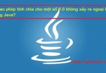 Vì sao phép tính chia cho một số 0.0 không xảy ra ngoại lệ trong Java